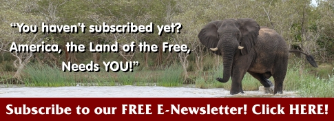 Subscribe to our FREE E-Newsletter!